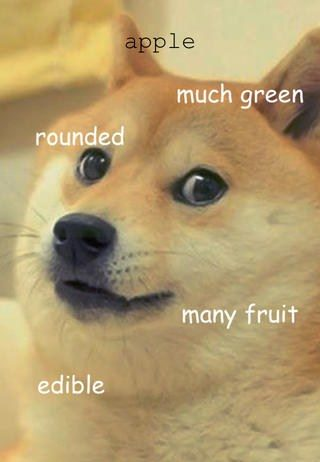 according-to-doge-game