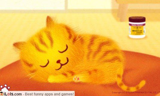 petting-cat-oronyain-app