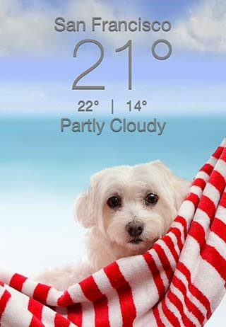 puppy-weather-app